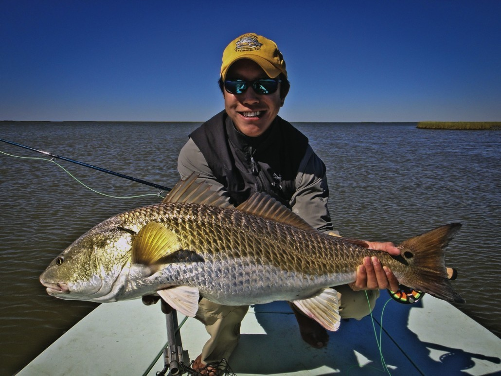 Redfishing louisiana dulac louisiana fishabout for Louisiana redfish fly fishing