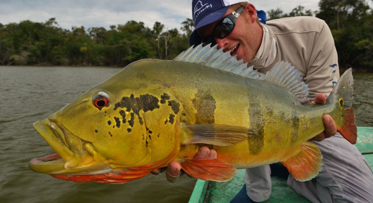 Agua boa lodge amazon fishabout fishing outfitters for Amazon fly fishing
